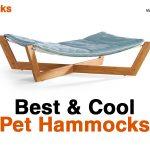 Best Pet Hammocks